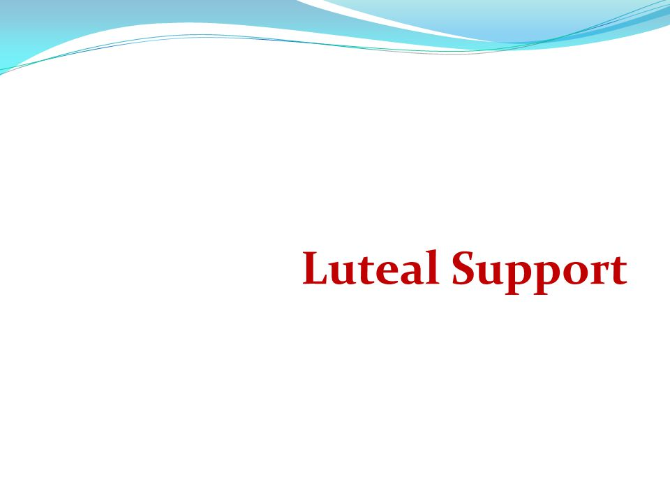 Luteal Support