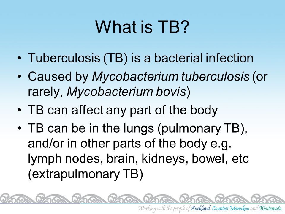 What is TB Tuberculosis (TB) is a bacterial infection