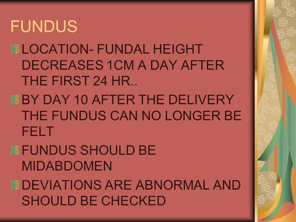 FUNDUS LOCATION- FUNDAL HEIGHT DECREASES 1CM A DAY AFTER THE FIRST 24 HR.. BY DAY 10 AFTER THE DELIVERY THE FUNDUS CAN NO LONGER BE FELT.