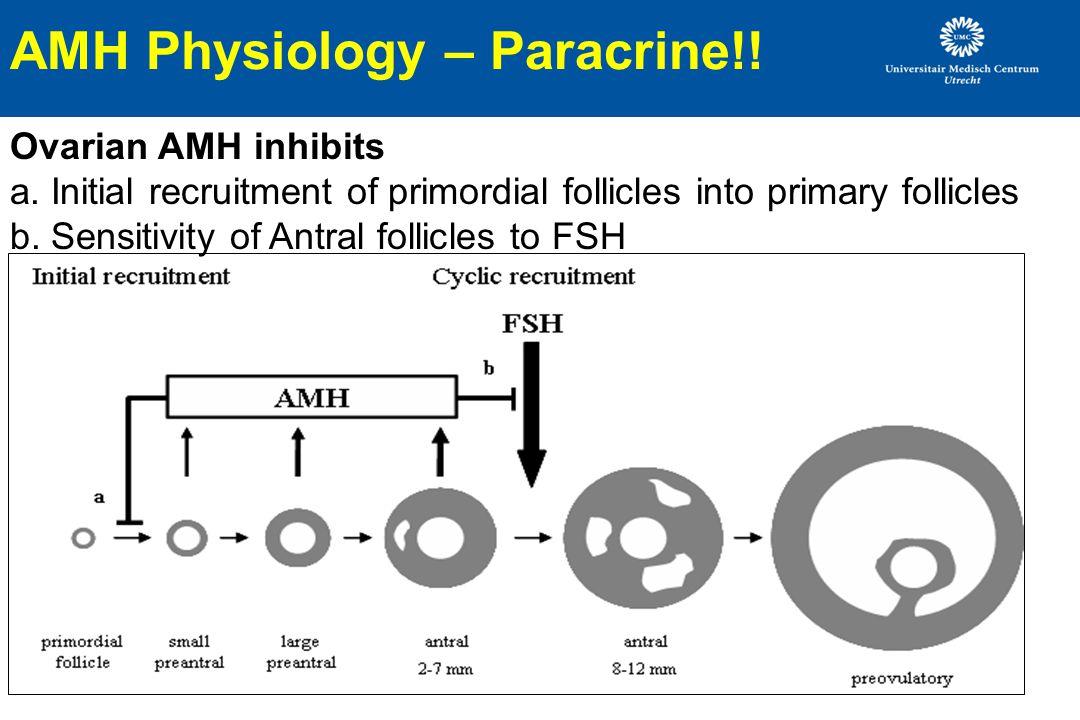 AMH Physiology – Paracrine!!