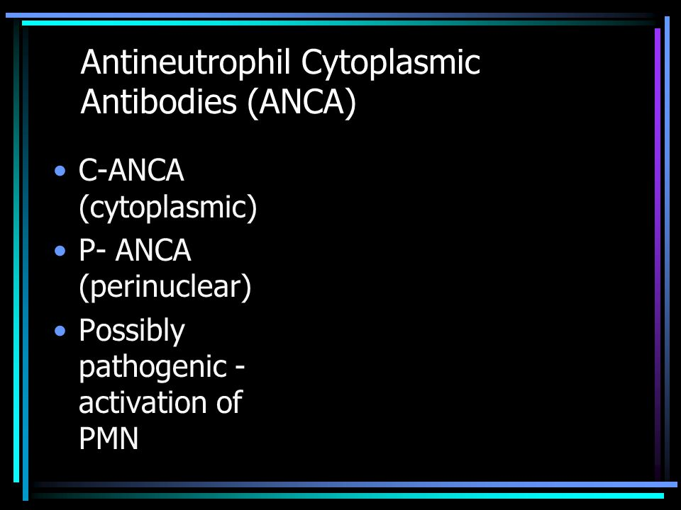Antineutrophil Cytoplasmic Antibodies (ANCA)