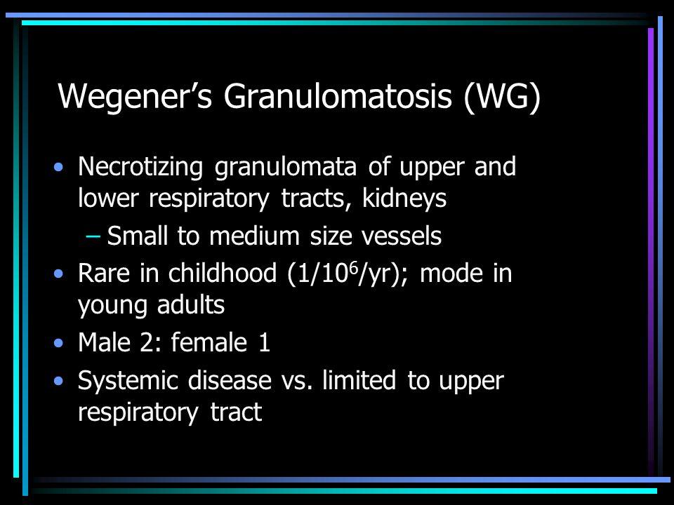 Wegener's Granulomatosis (WG)