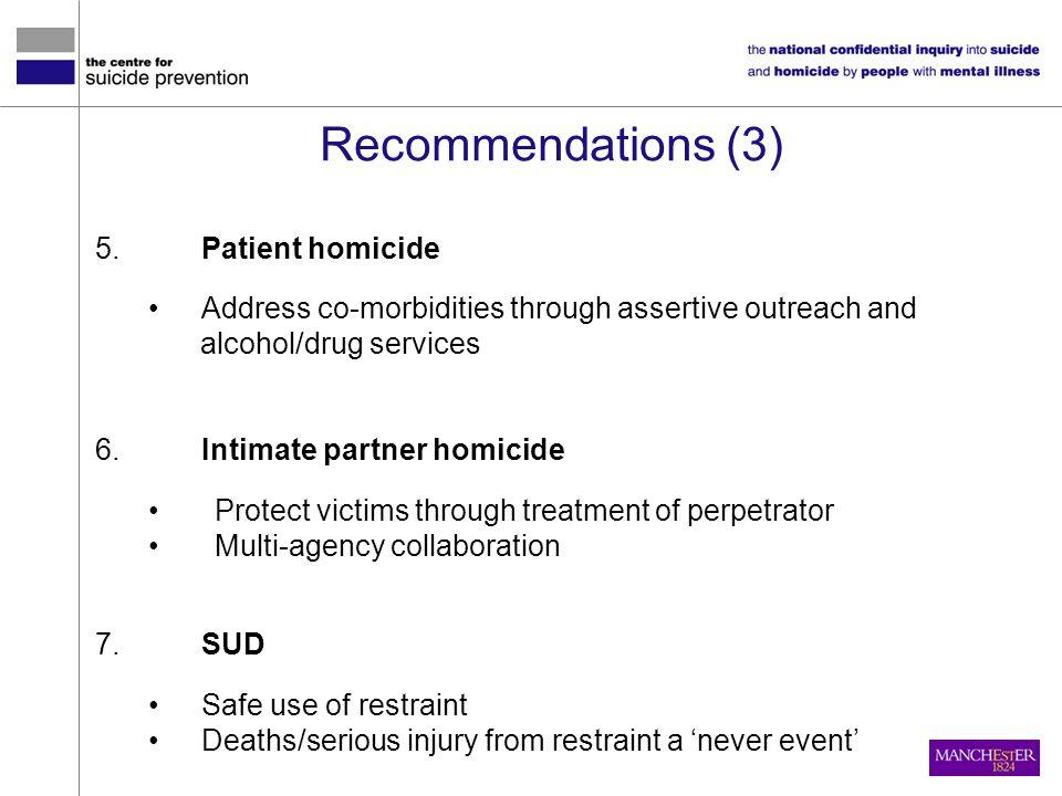 Recommendations (3) Patient homicide