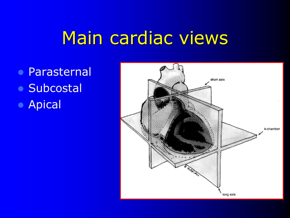 Main cardiac views Parasternal Subcostal Apical