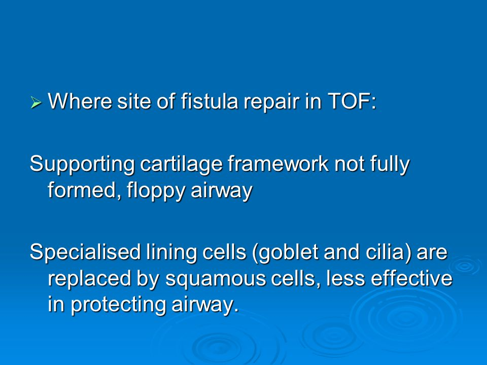 Where site of fistula repair in TOF: