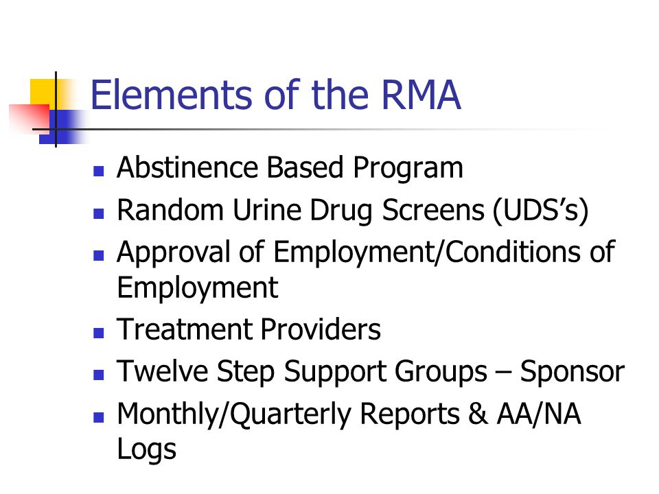 Elements of the RMA Abstinence Based Program