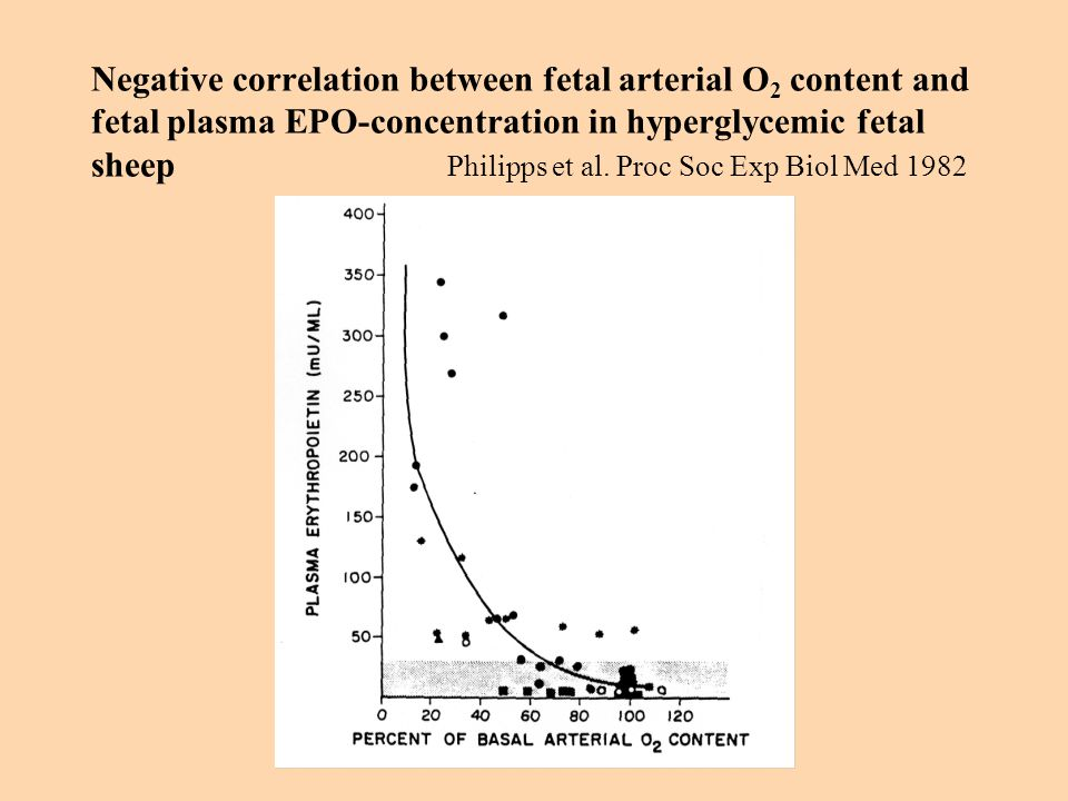 Negative correlation between fetal arterial O2 content and fetal plasma EPO-concentration in hyperglycemic fetal sheep Philipps et al.