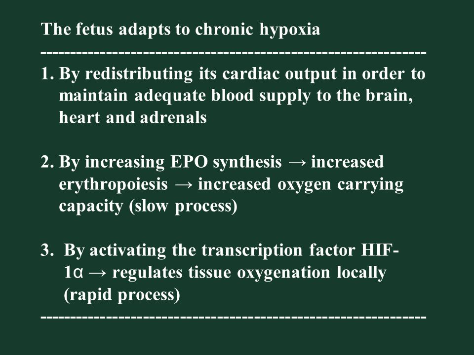 The fetus adapts to chronic hypoxia --------------------------------------------------------------- 1.