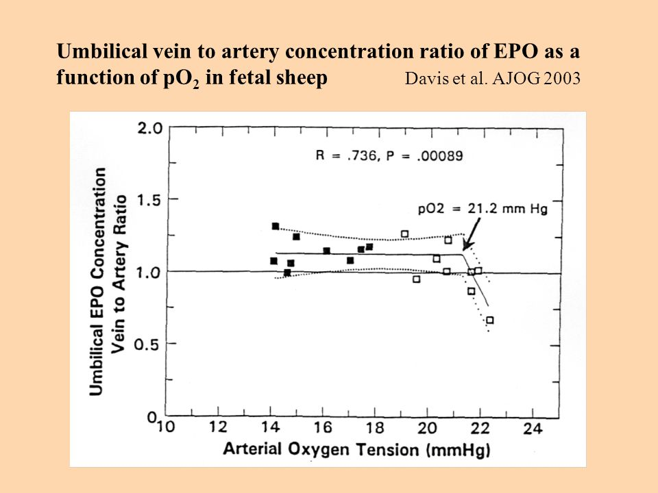 Umbilical vein to artery concentration ratio of EPO as a function of pO2 in fetal sheep Davis et al.