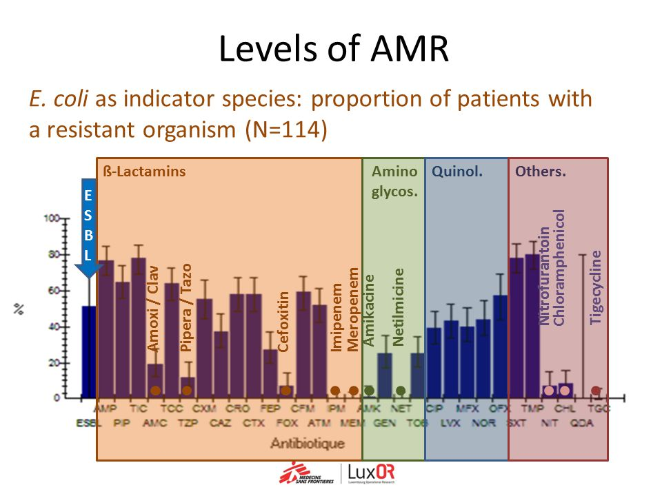 Levels of AMR E. coli as indicator species: proportion of patients with a resistant organism (N=114)