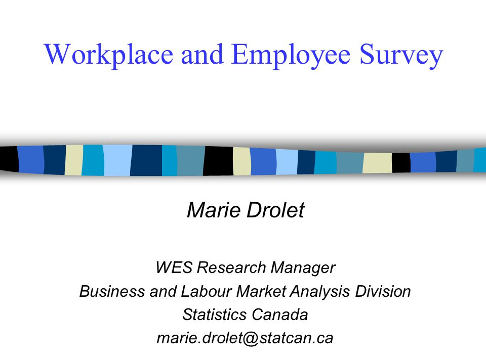Workplace and Employee Survey