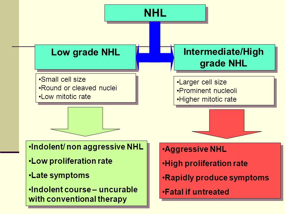 Intermediate/High grade NHL
