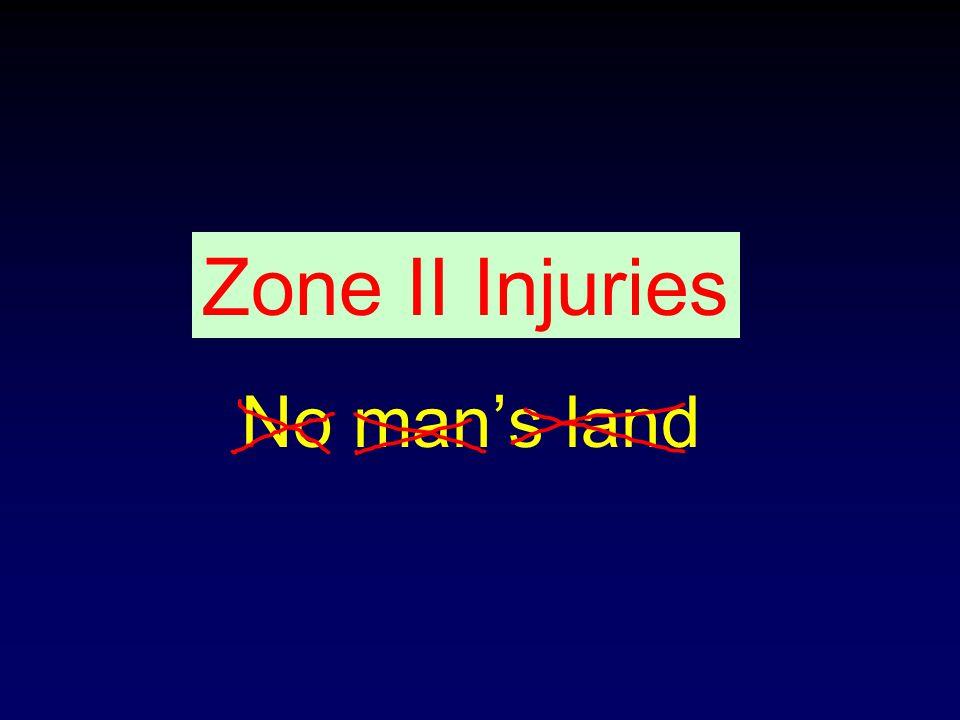 Zone II Injuries No man's land
