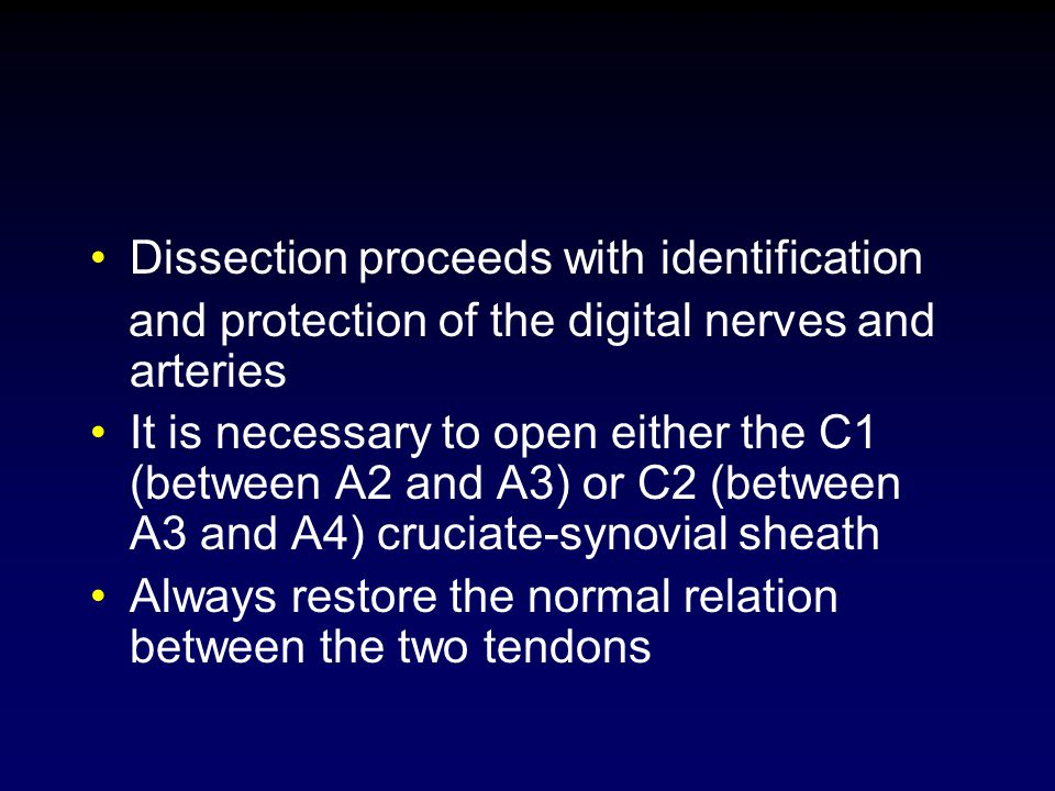 Dissection proceeds with identification