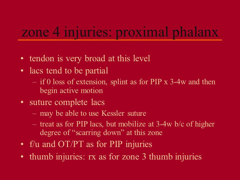 zone 4 injuries: proximal phalanx
