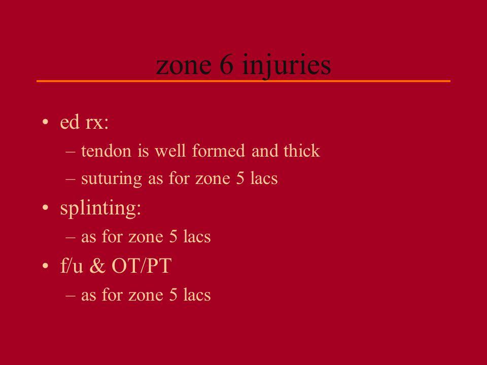 zone 6 injuries ed rx: splinting: f/u & OT/PT