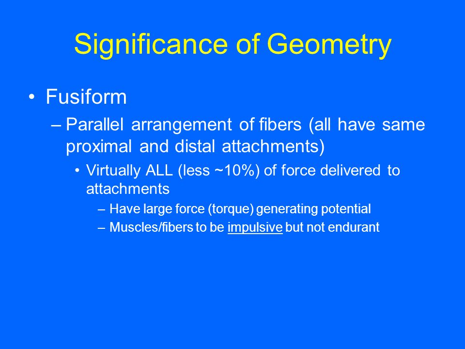 Significance of Geometry