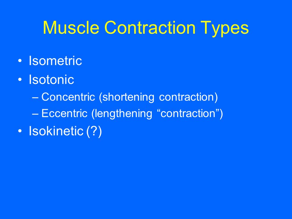 Muscle Contraction Types