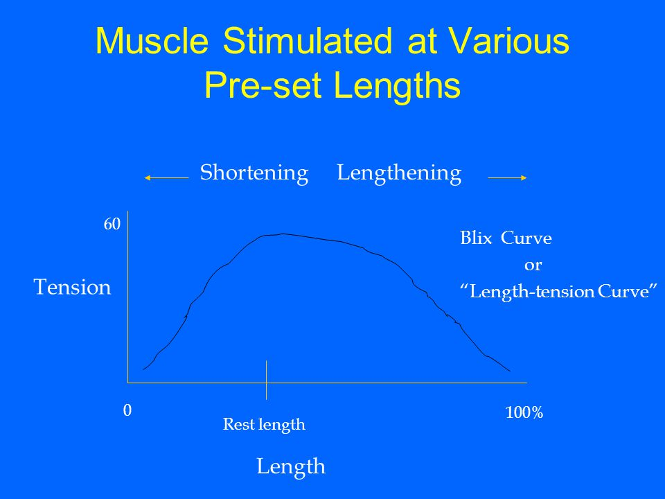 Muscle Stimulated at Various Pre-set Lengths