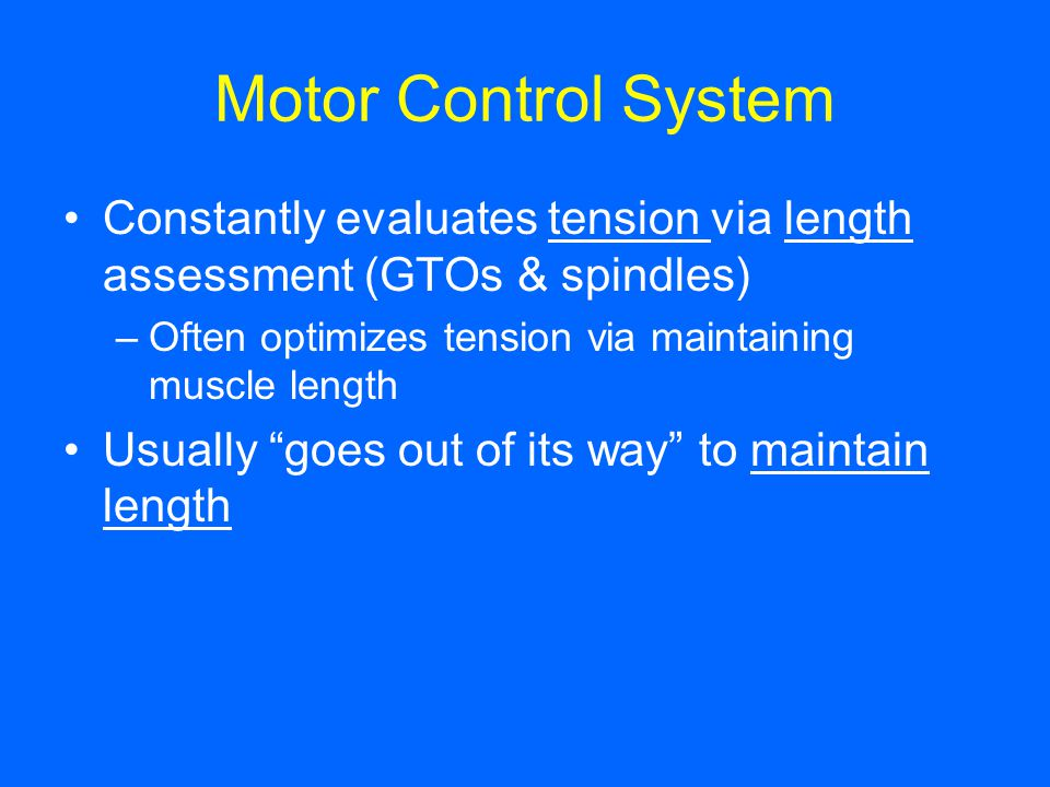 Motor Control System Constantly evaluates tension via length assessment (GTOs & spindles) Often optimizes tension via maintaining muscle length.
