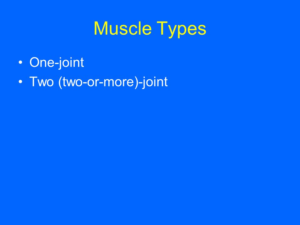 Muscle Types One-joint Two (two-or-more)-joint