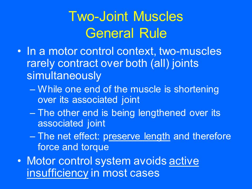 Two-Joint Muscles General Rule