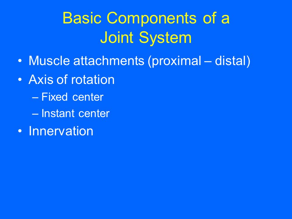Basic Components of a Joint System