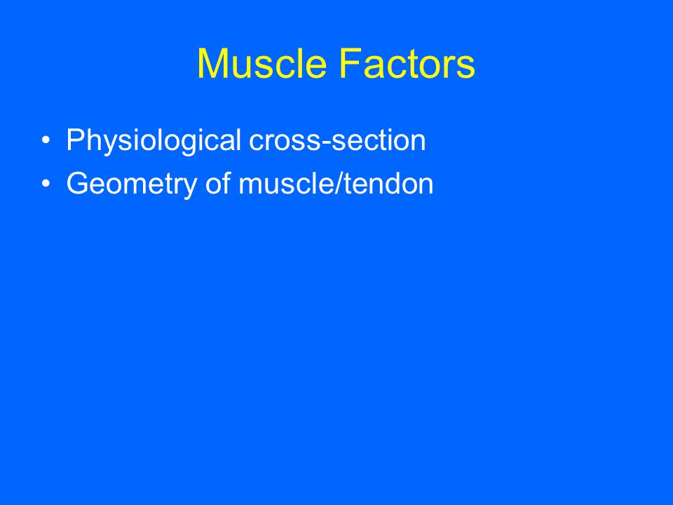 Muscle Factors Physiological cross-section Geometry of muscle/tendon