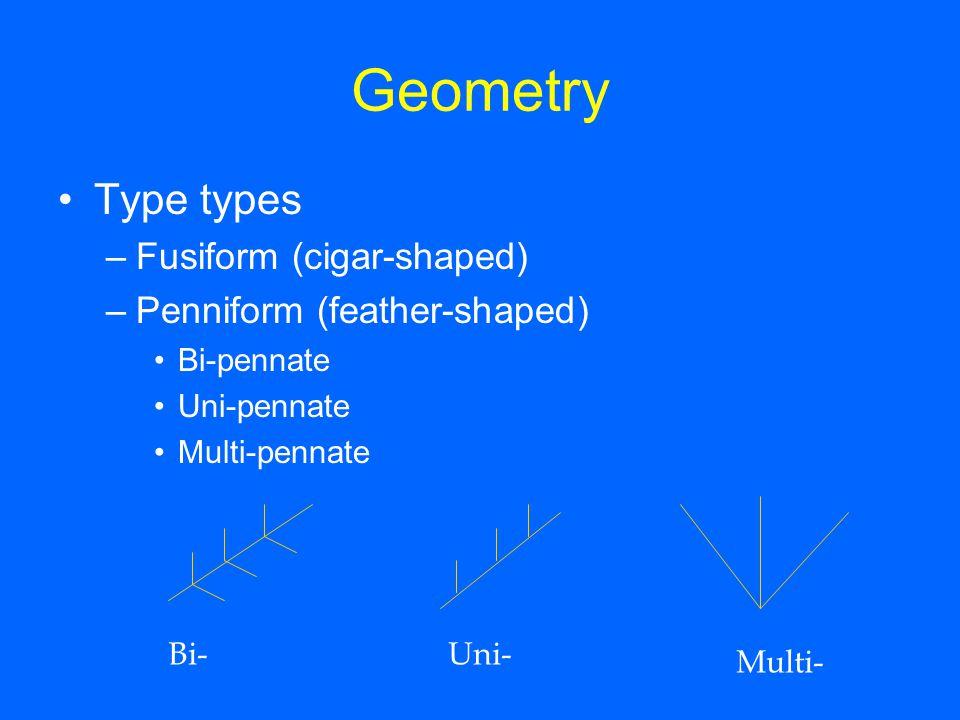Geometry Type types Fusiform (cigar-shaped) Penniform (feather-shaped)