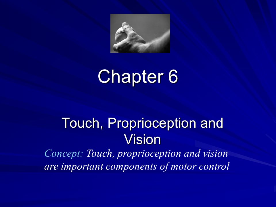 Touch, Proprioception and Vision