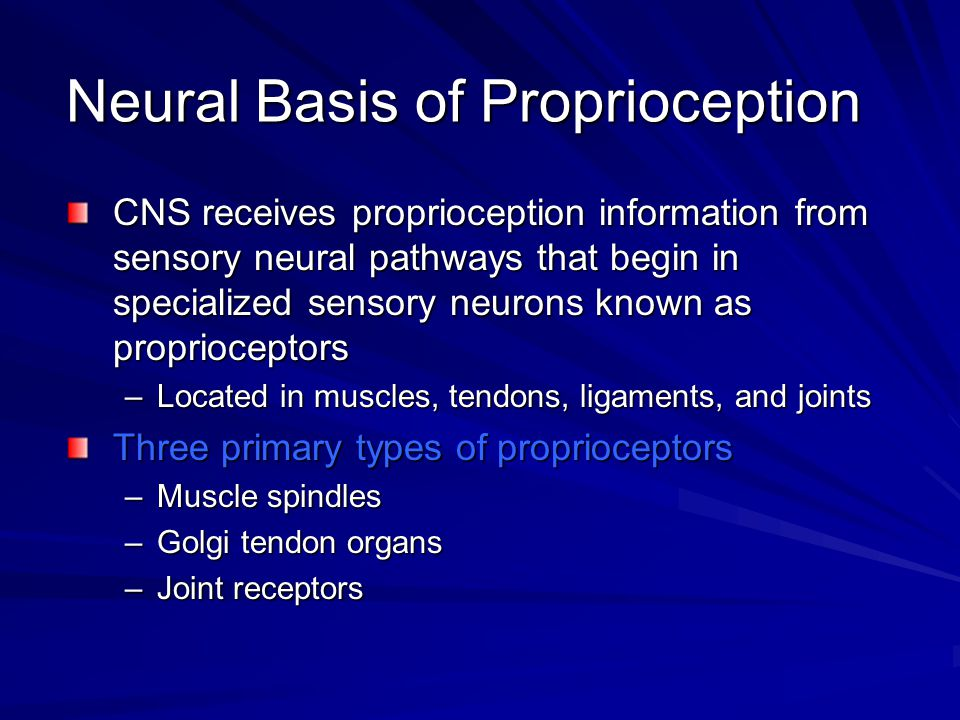 Neural Basis of Proprioception