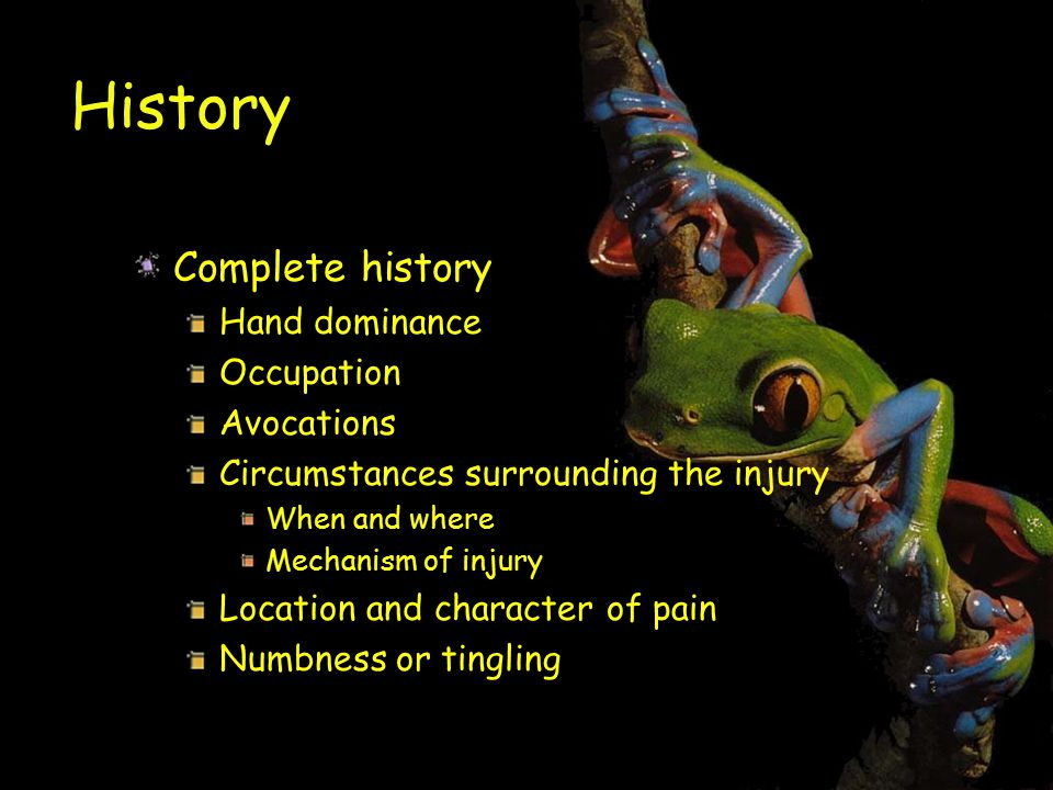 History Complete history Hand dominance Occupation Avocations