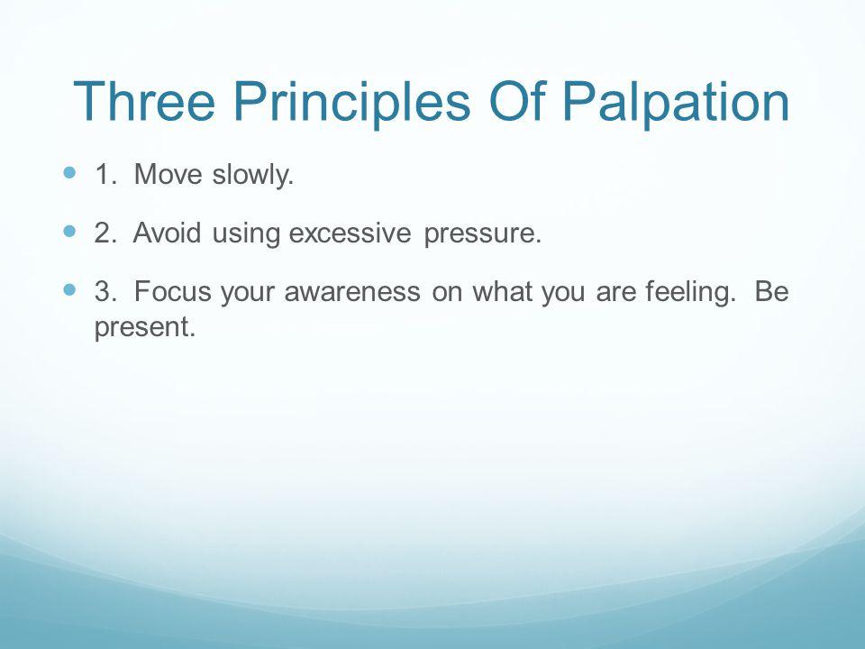 Three Principles Of Palpation