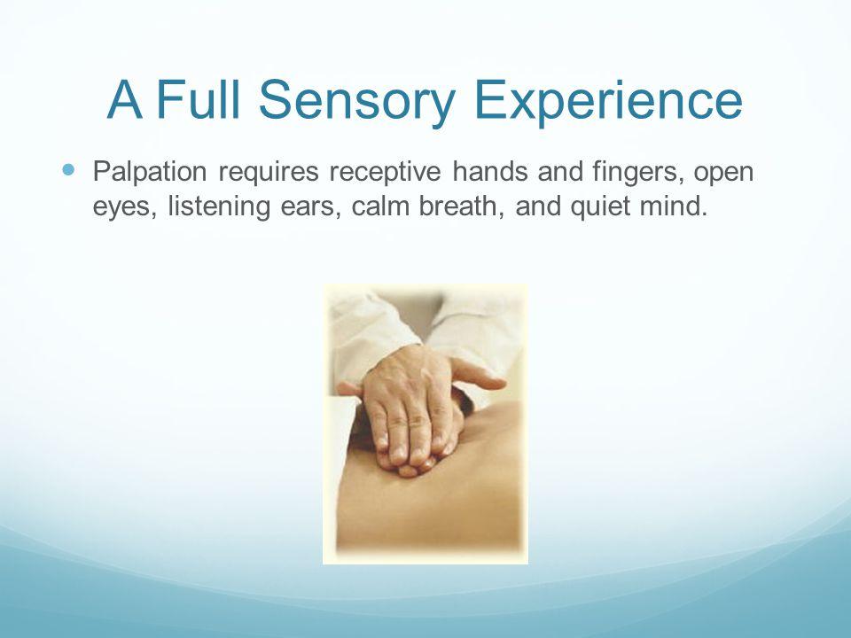 A Full Sensory Experience