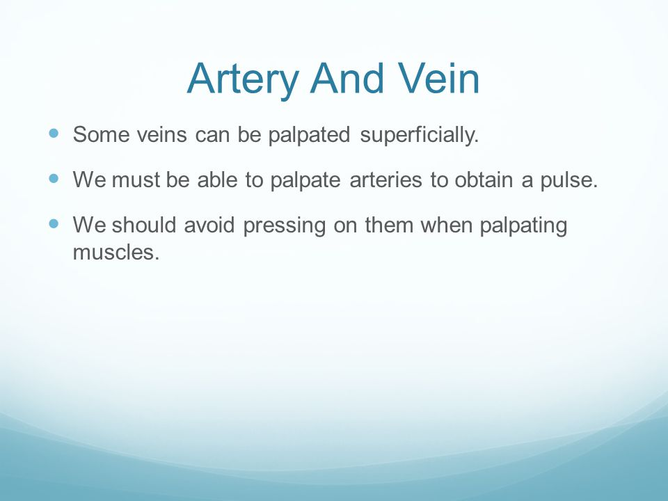 Artery And Vein Some veins can be palpated superficially.