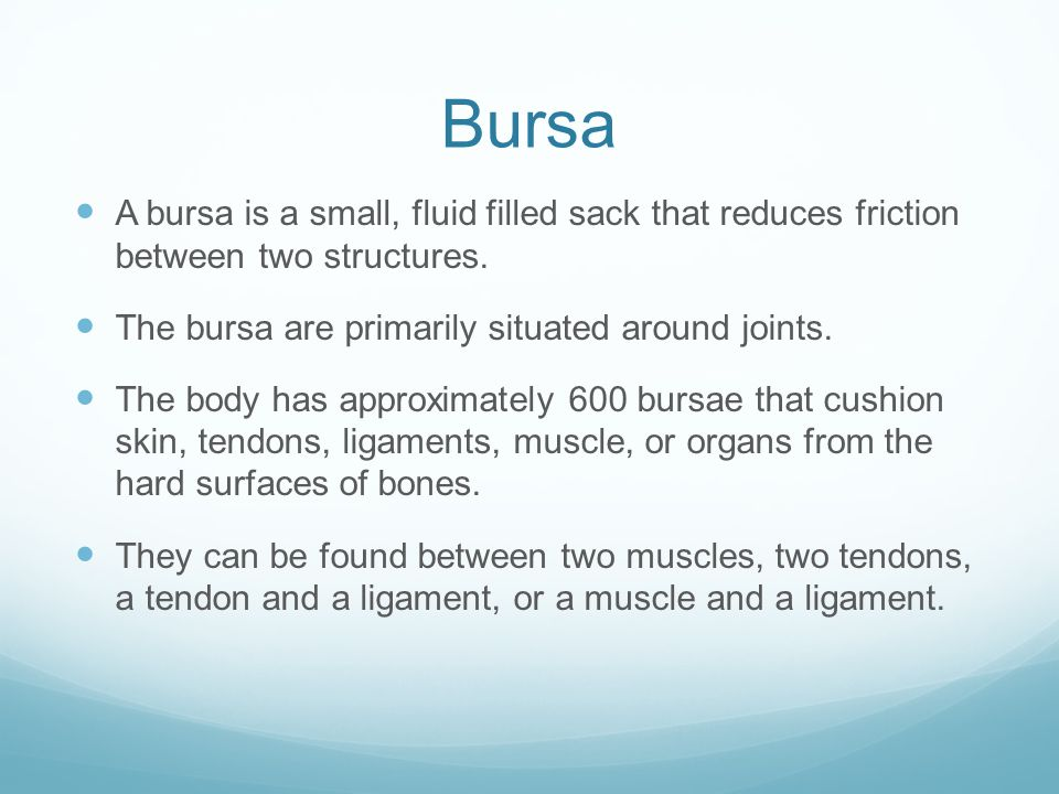 Bursa A bursa is a small, fluid filled sack that reduces friction between two structures. The bursa are primarily situated around joints.