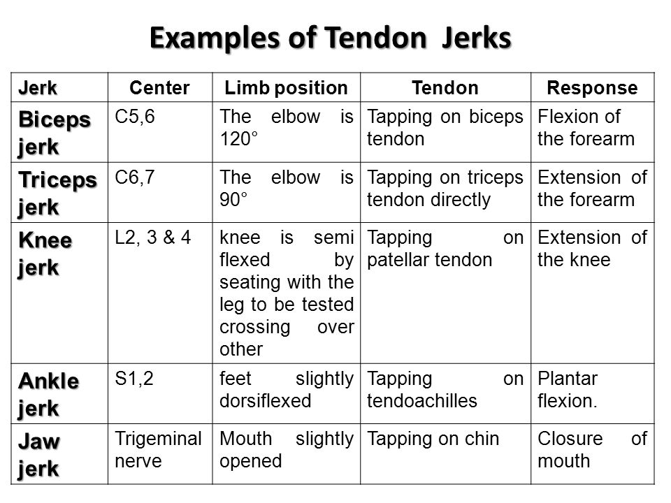 Examples of Tendon Jerks