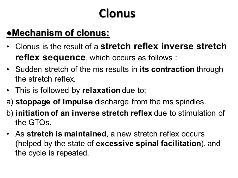 Clonus ●Mechanism of clonus: