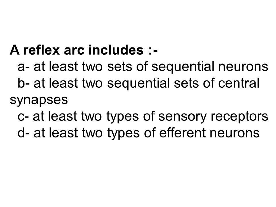 A reflex arc includes :-
