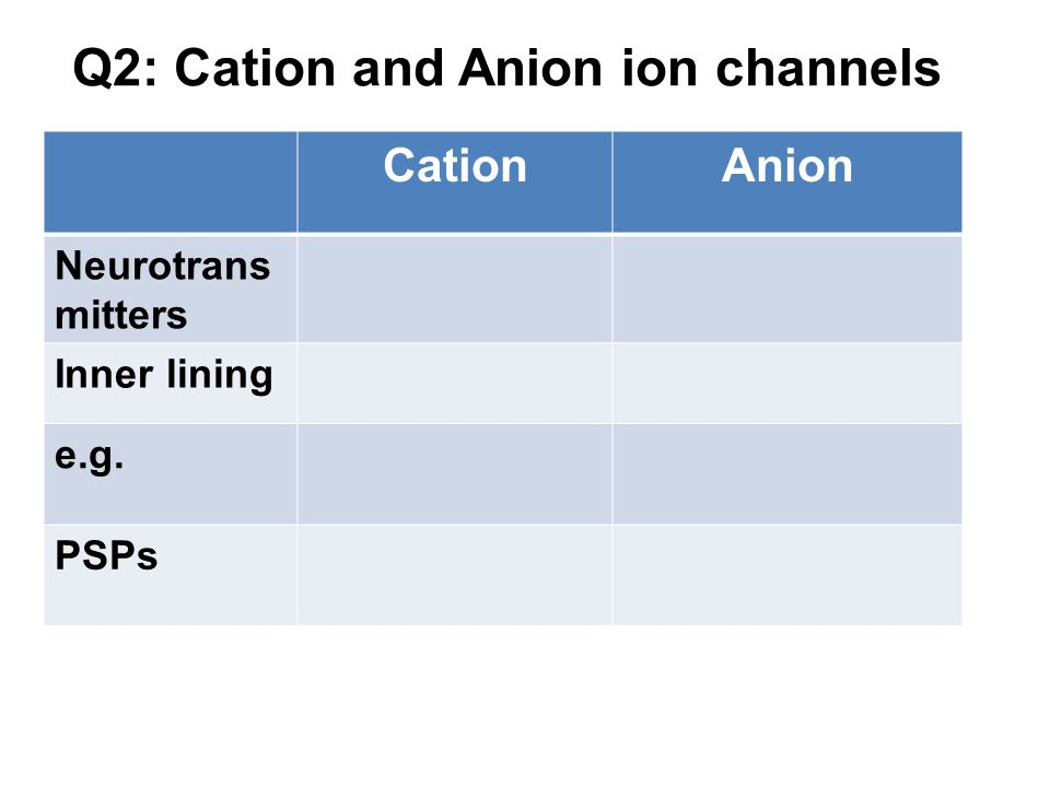Q2: Cation and Anion ion channels