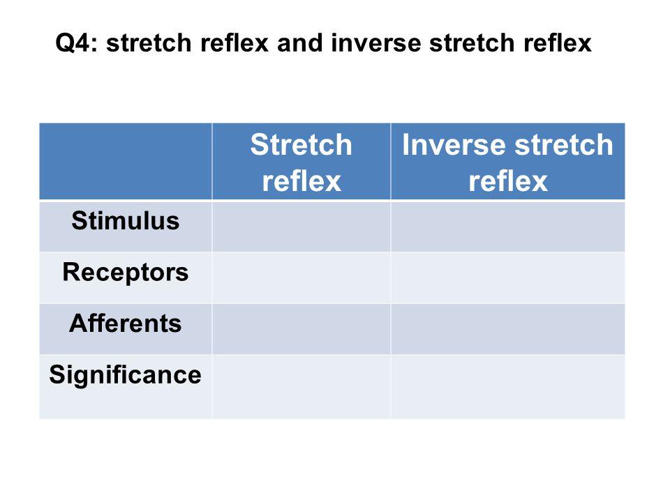 Q4: stretch reflex and inverse stretch reflex