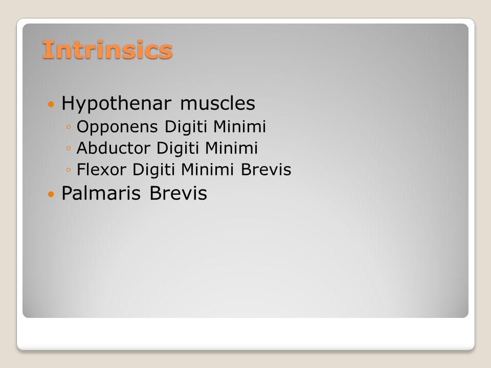 Intrinsics Hypothenar muscles Palmaris Brevis Opponens Digiti Minimi