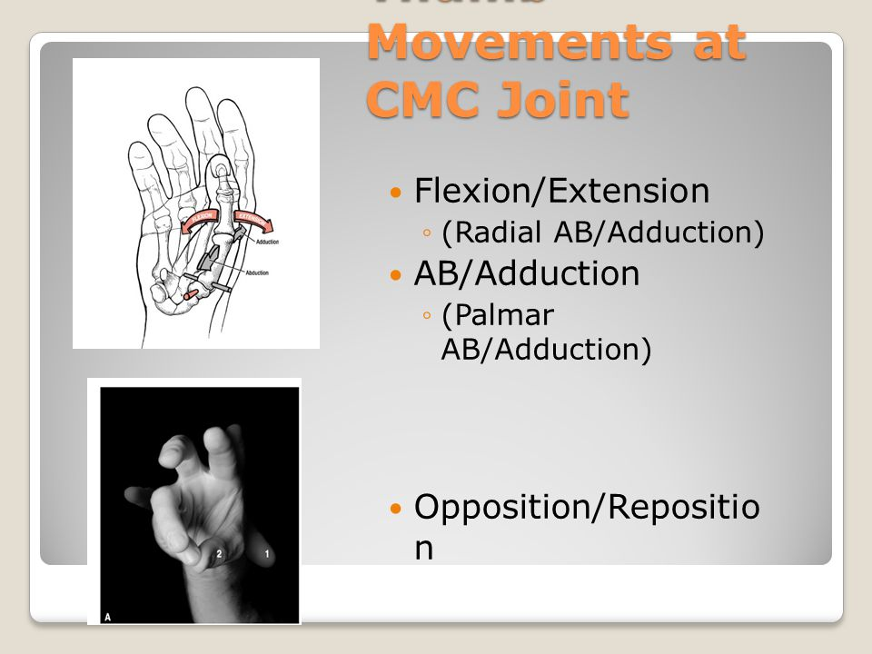 Thumb Movements at CMC Joint