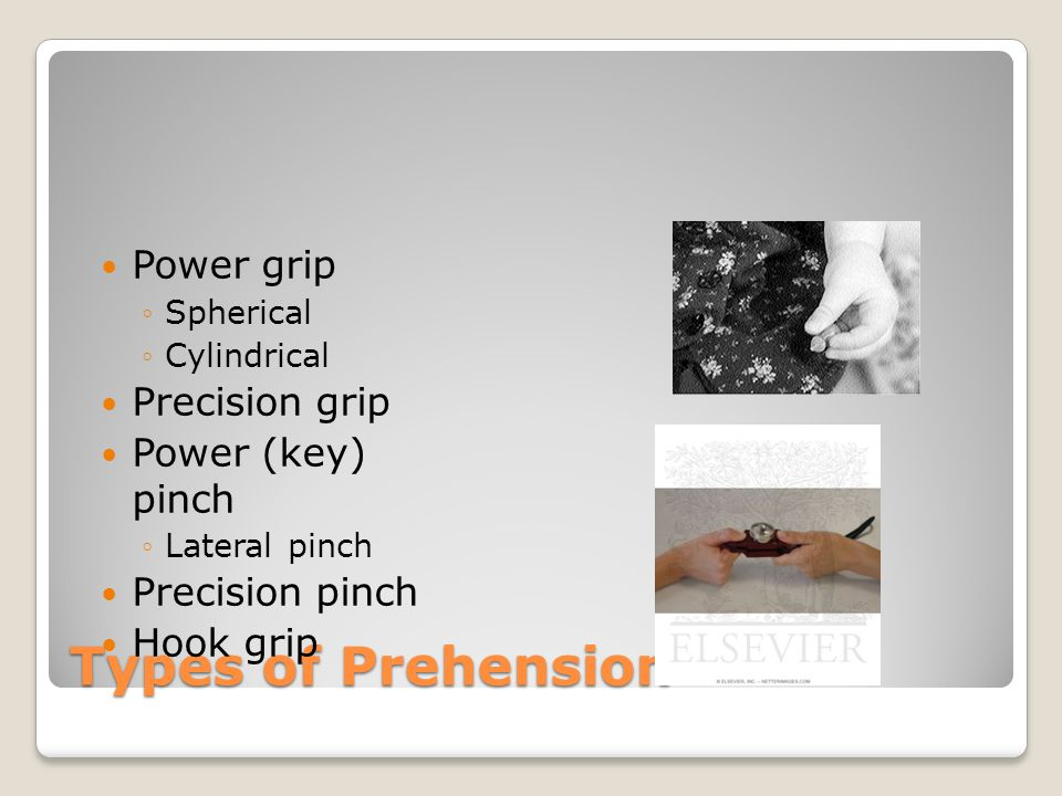 Types of Prehension Power grip Precision grip Power (key) pinch