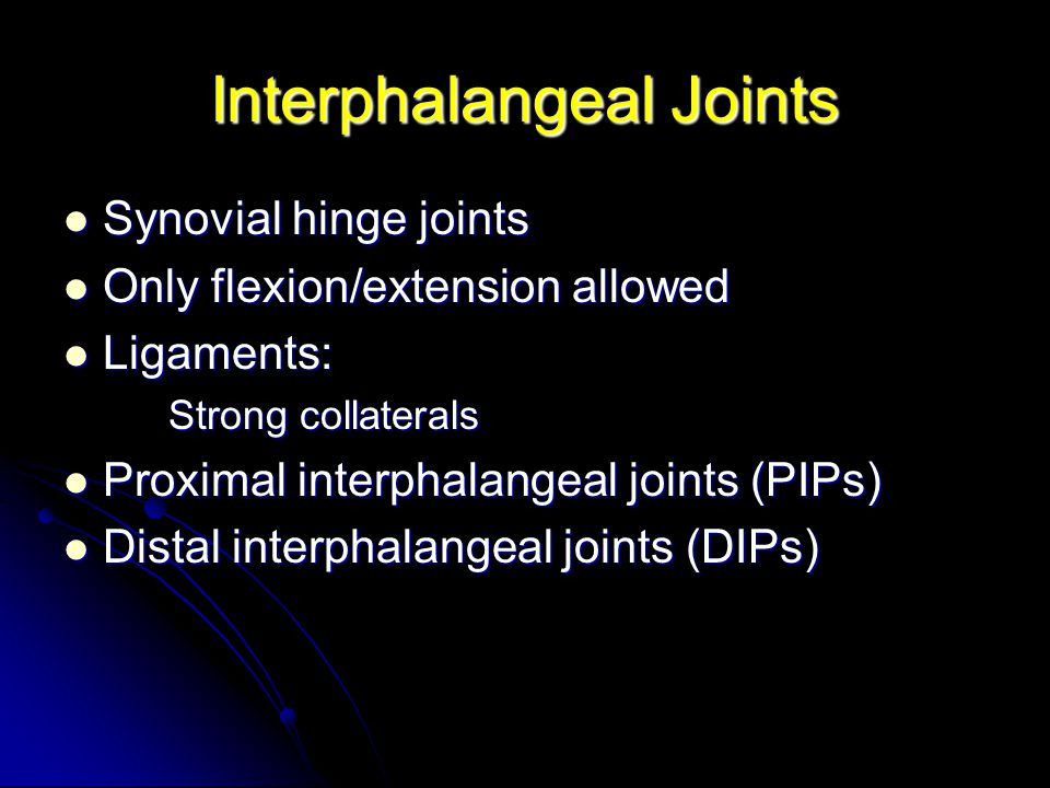 Interphalangeal Joints