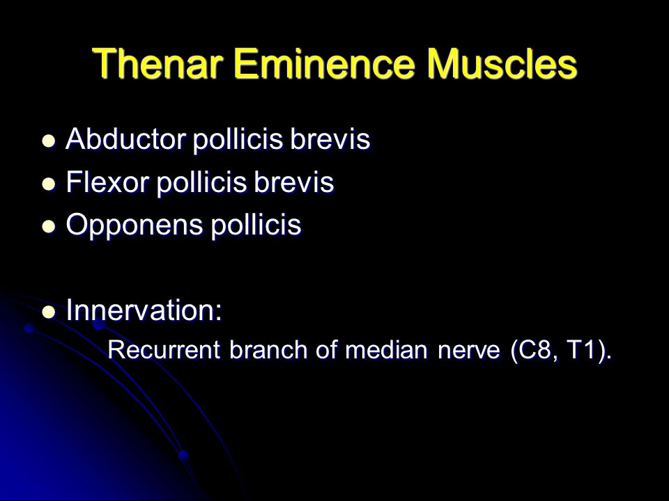 Thenar Eminence Muscles