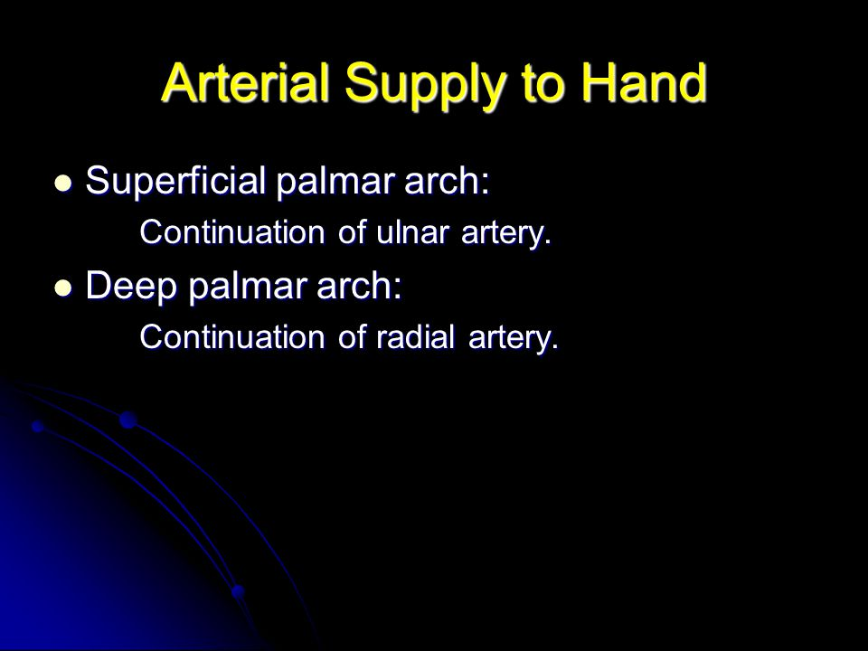 Arterial Supply to Hand