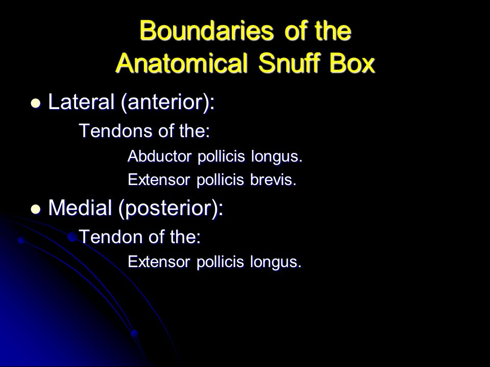 Boundaries of the Anatomical Snuff Box