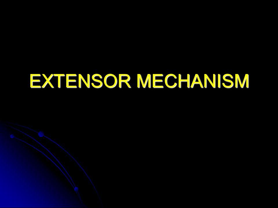 EXTENSOR MECHANISM