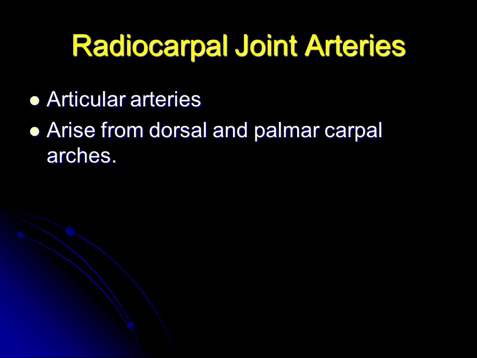 Radiocarpal Joint Arteries
